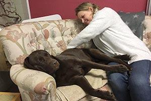 Tierphysiotherapeutin wendet die Dorntherapie beim Hund